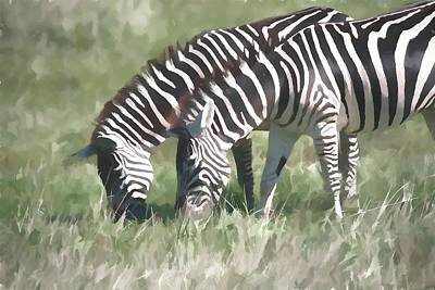 Painting - Grazing Zebras by Dan Sproul