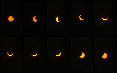 Photograph - Great American Eclipse 2017 by Mandy Shupp