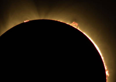 Photograph - Great American Eclipse Prominence 5x7 As Seen In Albany, Oregon. by John King