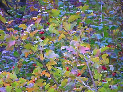 Photograph - Great Autumn by Oleg Zavarzin