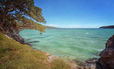 Venice Beach Bungalow - Great Barrier Island New Zealand Coastal View by Joan Carroll