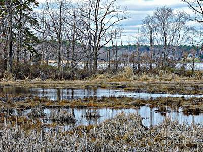 Photograph - Great Bay by Marcia Lee Jones