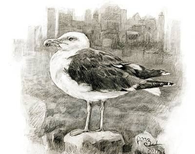Great Black-backed Gull Art Print