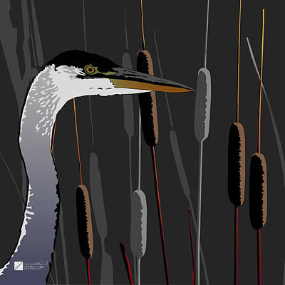 Digital Art - Great Blue Heron - Dark Background by Marcus England