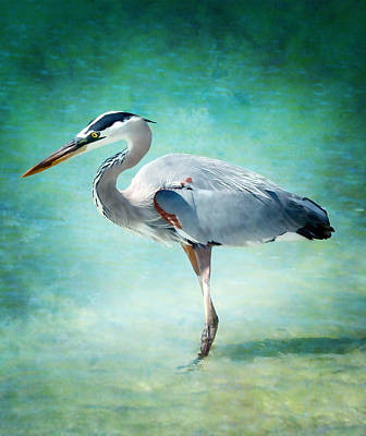 Great Blue Heron Art Print by Ellen Heaverlo