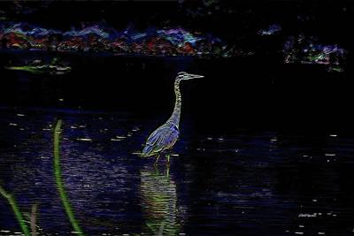 Photograph - Great Blue Heron Evening Glow-6805 by Ericamaxine Price
