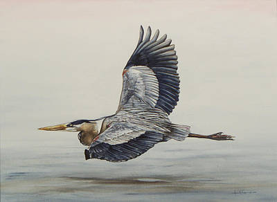 Painting - Great Blue Heron Flying by Laurie Tietjen