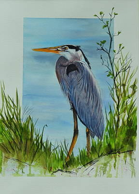 Painting - Great Blue Heron by John W Walker