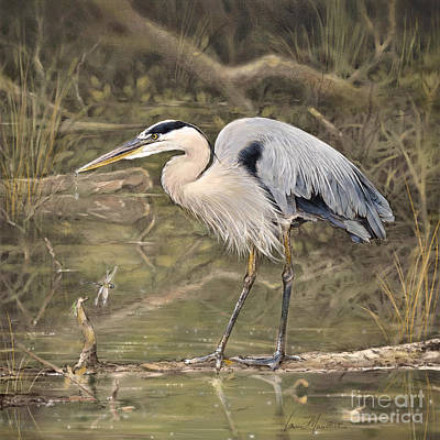 Wall Art - Drawing - Great Blue Heron by Laurie Musser