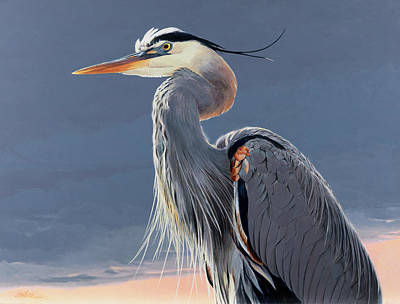 Great Blue Heron Painting - Great Blue Heron by Shawn Shea
