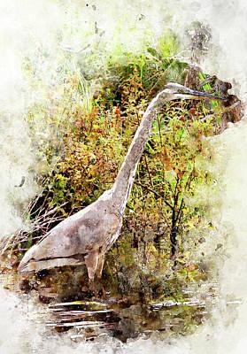 Digital Art - Great Blue Heron W C by Peter J Sucy