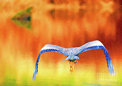 Digital Art - Great Blue Heron Winging It Photo Art by Sharon Talson