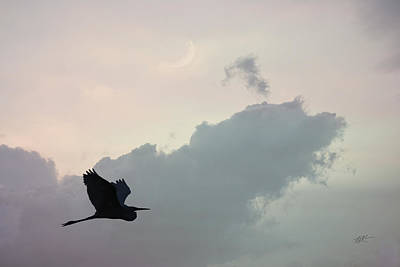 Photograph - Great Blue - Sunset Moon by rd Erickson