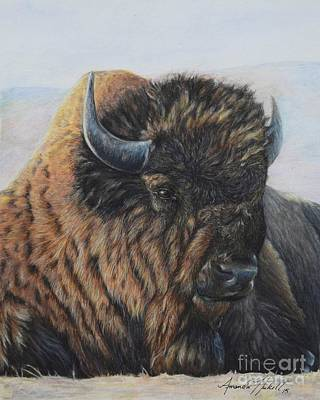 Painting - Great Buffalo by Amanda Hukill
