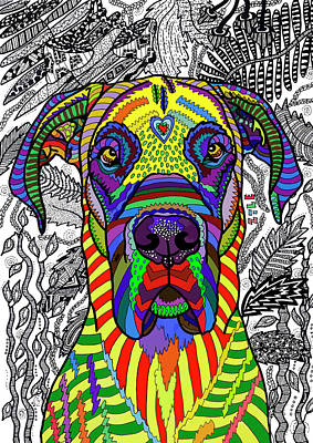 Drawing - Great Dane by ZileArt
