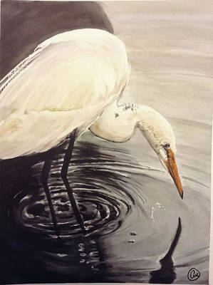 Painting - Great Egret , Mirror by Annie Poitras