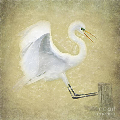 Egret Digital Art - Great Egret In Yellow by Betty LaRue