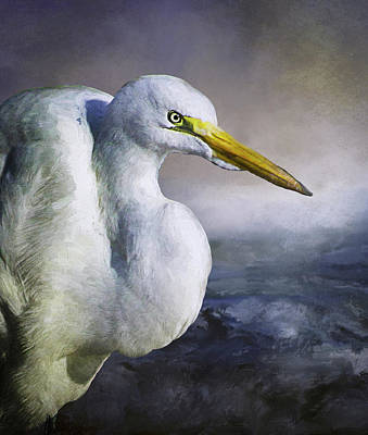Photograph - Great Egret by Morgan Wright