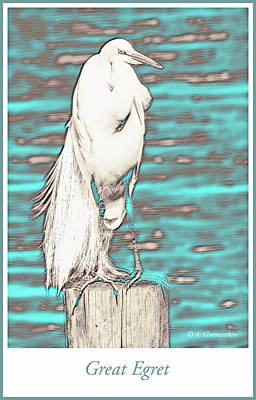 Lucille Ball - Great Egret on Dock Piling by A Macarthur Gurmankin