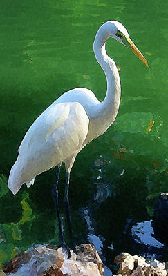 Art Print featuring the digital art Great Egret by Timothy Bulone