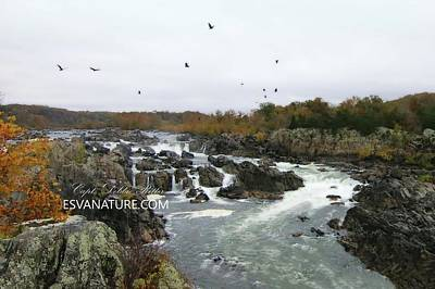 Photograph - Great Falls 9800 by Captain Debbie Ritter