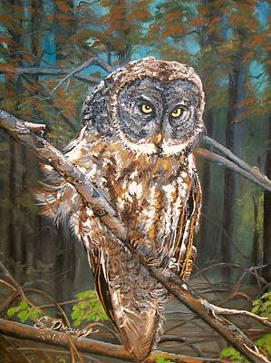 Painting - Great Grey Owl 2 by Sharon Duguay