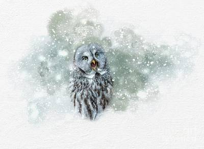 Great Grey Owl In Snowstorm Art Print