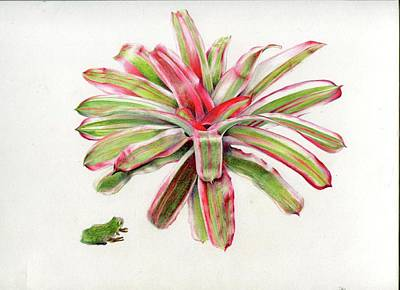 Neoregelia Painting - Great Hangout by Penrith Goff