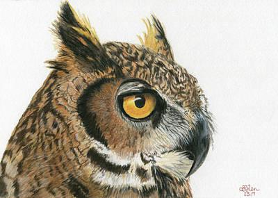 Drawing - Great Horned Owl 1 by Sheryl Elen