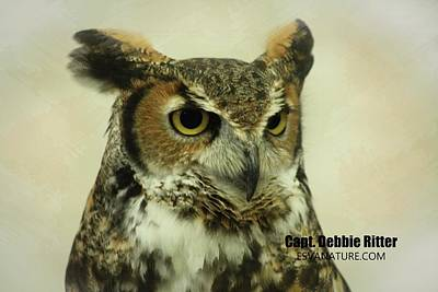 Photograph - Great Horned Owl 8925 by Captain Debbie Ritter
