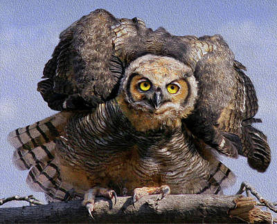 Photograph - Great Horned Owl by Art Cole
