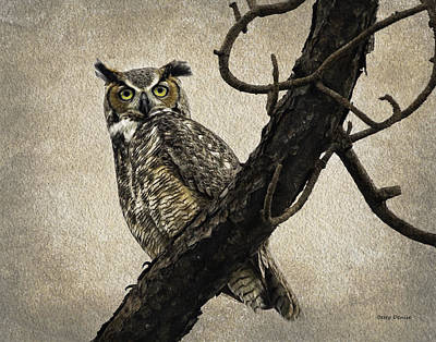 Great Horned Owl Original by Betty Denise