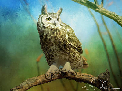 Digital Art - Great Horned Owl by Gloria Anderson