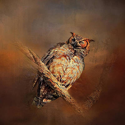 Photograph - Great Horned Owl by HH Photography of Florida