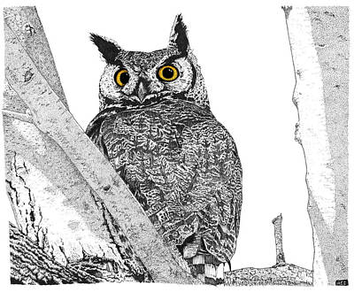 Drawing - Great Horned Owl In A Tamarisk - Colored Eyes Version by Marcus England