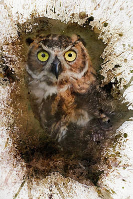 Photograph - Great Horned Owl In The Cemetery by Jai Johnson