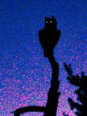 Great Horned Owl In The Desert Art Print
