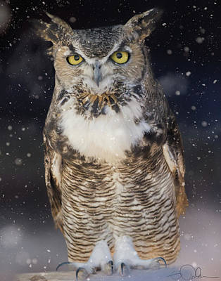 Photograph - Great Horned Owl In The Snow by Gloria Anderson