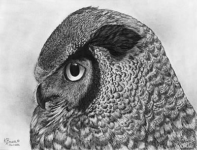 Great Horned Owl Drawing - Great Horned Owl by Kaitlin Bauer