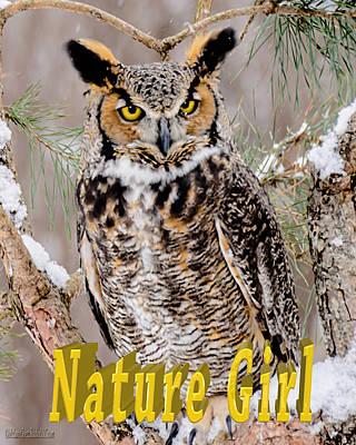 Great Horned Owl Photograph - Great Horned Owl Nature Girl by LeeAnn McLaneGoetz McLaneGoetzStudioLLCcom