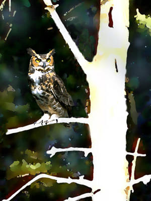 Painting - Great Horned Owl by Paul Sachtleben