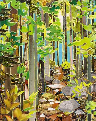 Mixed Media - Great Maine Woods by Robin Birrell