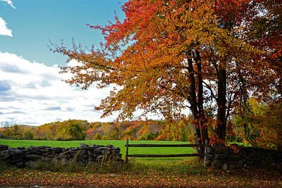 Photograph - Great Meadowbrook Farm Foliage by Mike Martin