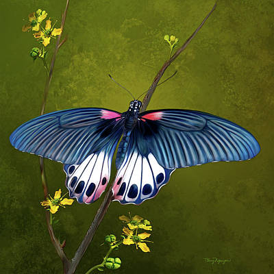 Flower Photograph - Great Mormon Butterfly by Thanh Thuy Nguyen
