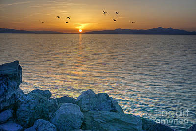 Photograph - Great Salt Lake At Sunset by Martin Konopacki