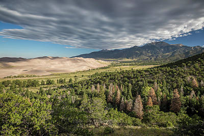 Photograph - Great Sand Dunes Colorado 6 by Whit Richardson