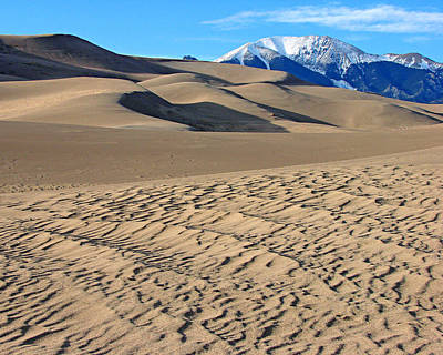 Photograph - Great Sand Dunes National Park 2 by Diana Douglass