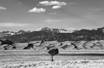 Photograph - Great Sand Dunes by Rand