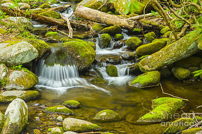 Photograph - Relaxing Meditation View Of Great Smoky Mountains National Park River by Stefano Senise