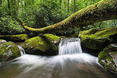 Gatlinburg Tennessee Photograph - Great Smoky Mountains National Park Roaring Fork by Mark VanDyke
